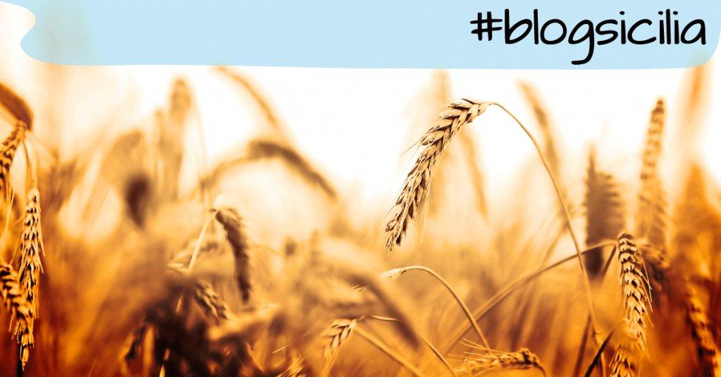 """""""Chiamar le cose con il loro nome è l'inizio della saggezza.""""  Buonasera da #blogsicilia"""