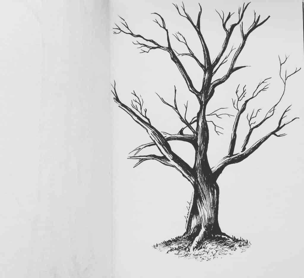 Tree 🌳 https://t.co/BS7vX6Jo75 https://t.co/UkfDhkM8rs