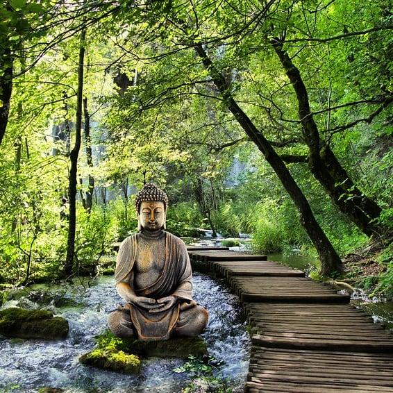💎#boutiquechakra 💎▪ #chakra #bouddha #bouddhisme #zen #zenattitude #spiritualite #méditation #meditations #momentprésent #momentpresent #bonheur #sagesse #pleineconscience #citation #citations #citationsdujour #citationzen #energiepositive #penseespositives #paixinterieure