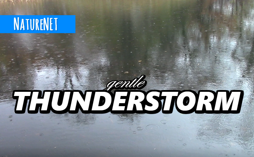Rolling Thunderstorm   Relaxing Nature Sounds https://buff.ly/2INbULT  #nature #relax #sleep #study #chill #nap #rest #meditation #zzz