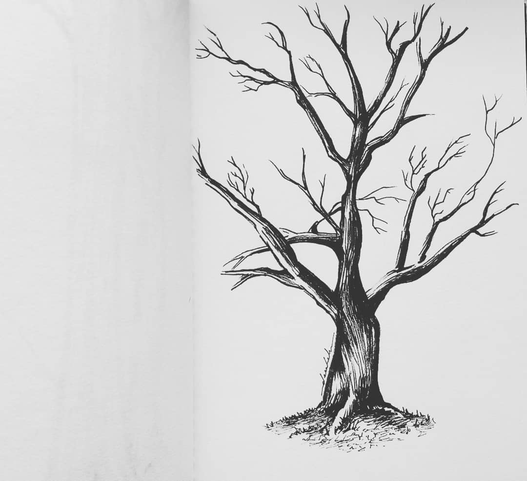 Tree 🌳 #dailyart #dailyillustration #tree #park #comicbookproject #blackandwhitedrawing #monochrome https://t.co/Oe9K1HmanH