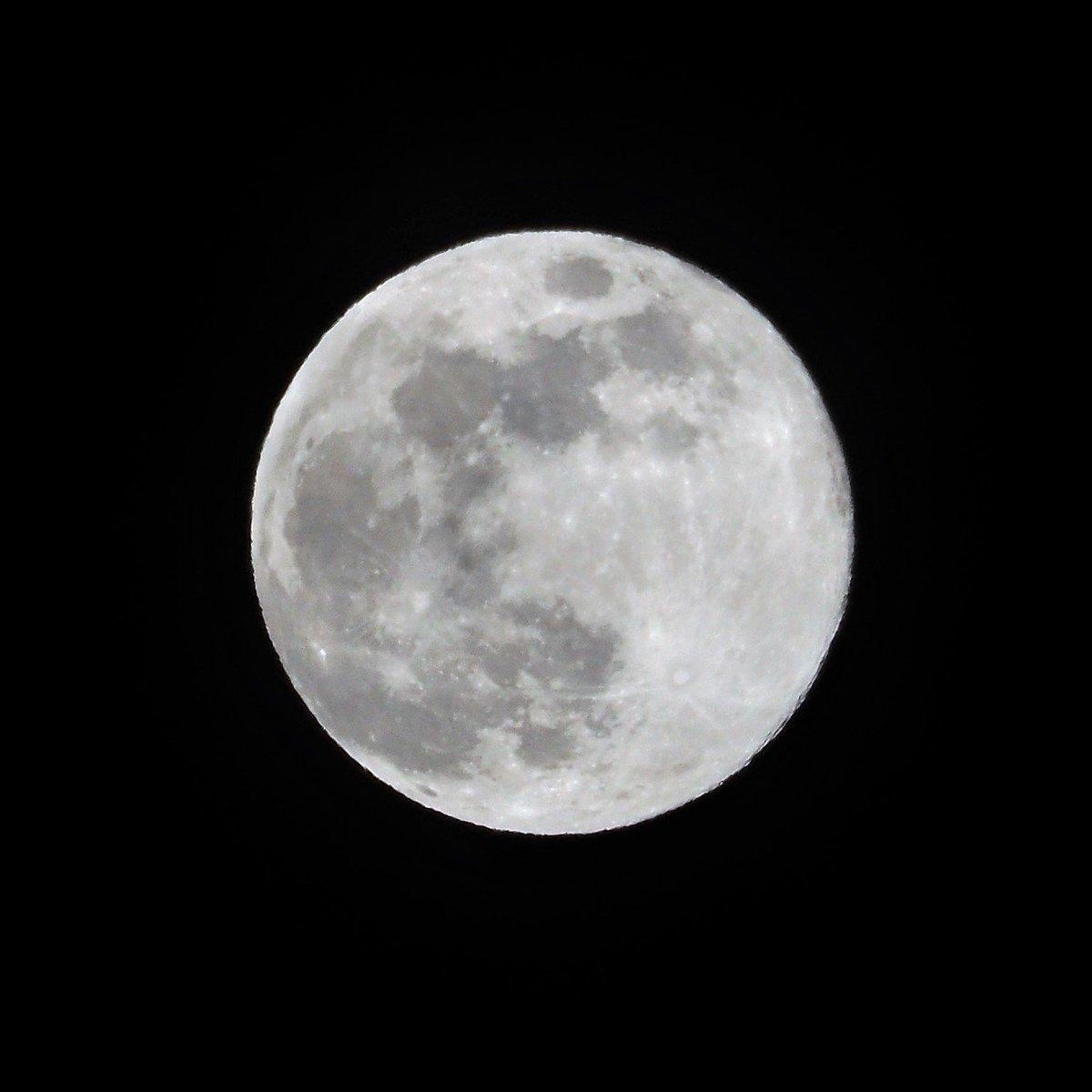 みなさん、平成最後の満月はご覧になりましたか? #平成最後の満月 #ピンクムーン