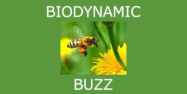 test Twitter Media - Check out our #Biodynamic Buzz newsletter for all the latest updates and trends in the BD News https://t.co/npvRtef7nu https://t.co/iRMGYE7dxi
