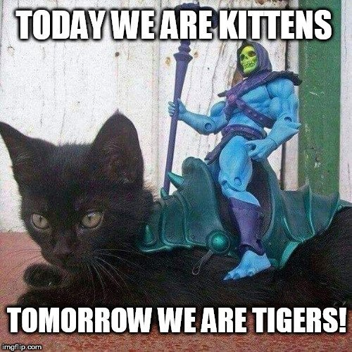 A little crossover post perhaps of #CatOftheDay and #SkeletorWisdom. Look at that adorable kitten. Skeletor says we are always growing as people.  @pkmmpositivity @1wiccangirl
