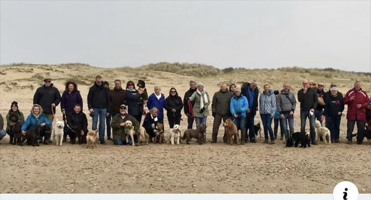 We've made #RyeNews this week!  The Agria Pet Insurance sponsored walk is open to everyone, so remember to invite your non-#doodle #doggie #friends to join us for this special walk on Sat 25th May. Agria will donate £5 for every dog that walks. @AgriaPetUK http://www.ryenews.org.uk/living/walk-your-doodle-on-the-beach…