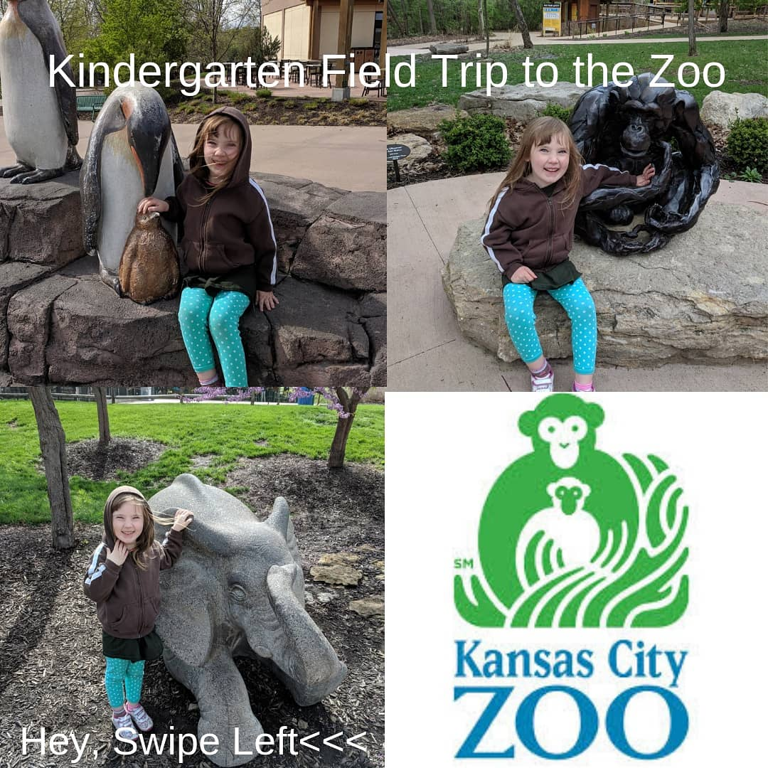 Kindergarten Field Trip to the Zoo #lsr7 #woodlandelementary #kczoo #voiceactor #voiceover #voiceoverguy #voiceoverist #voiceovercasting #voiceovercoach #voicetalent #audiobooks #commercial #corporatenarration #corporatevideo  #elearning #explainervideo #voiceoverartistkansascity