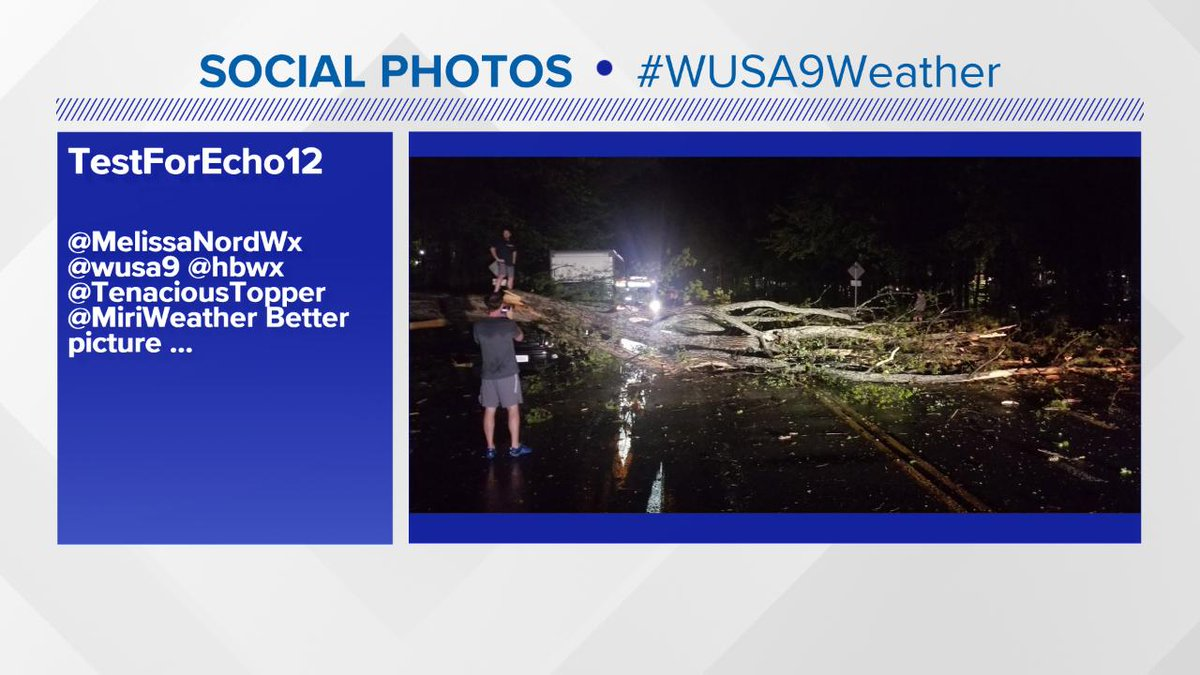 TREES DOWN - Center Harbor Road in Reston, VA. Thank you for sharing photos @TestForEcho12 #wusa9weather @hbwx @tenacioustopper<br>http://pic.twitter.com/UnEOZGqZTw