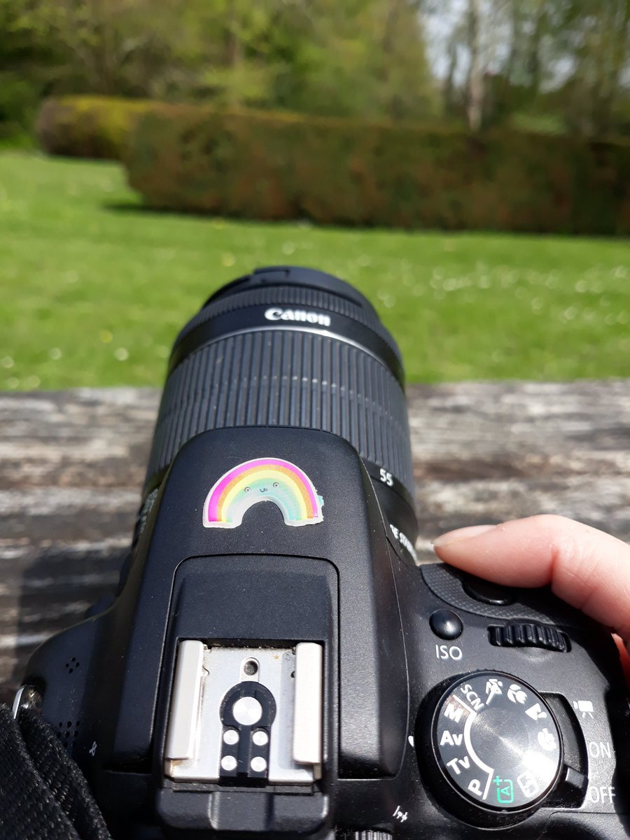 I love rainbows so Lillibug decorated my camera with her sticker 🌈 Adds a bit of character and I love it. #canon #rainbow