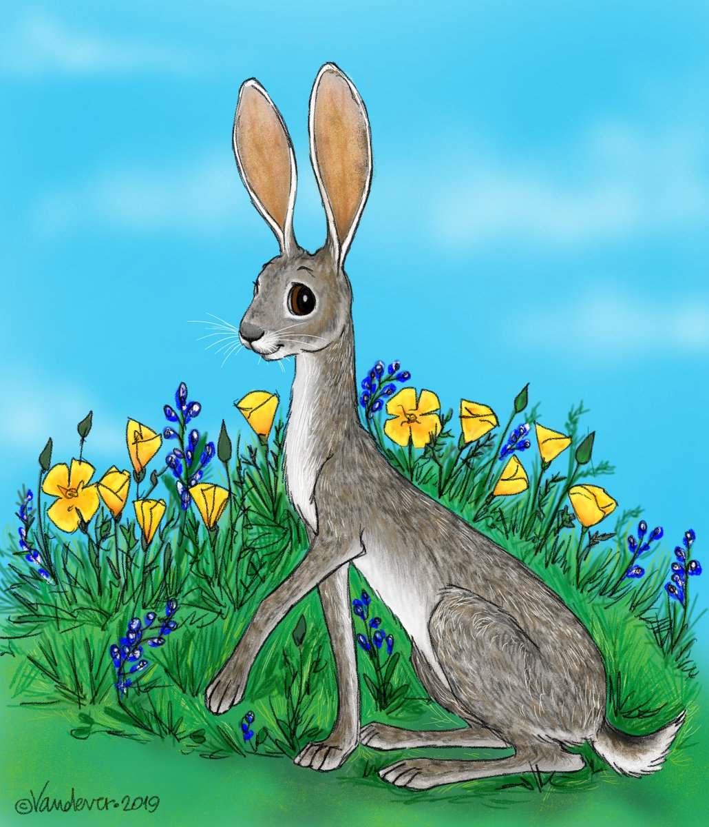 Here are two spring-y rabbits for this week&#39;s #colour_collective @Clr_Collective. Is there a happier color than #lemonyellow? #kidlitart #illustrationartists #illustrationart #chroniclife<br>http://pic.twitter.com/YhiwOicqtd