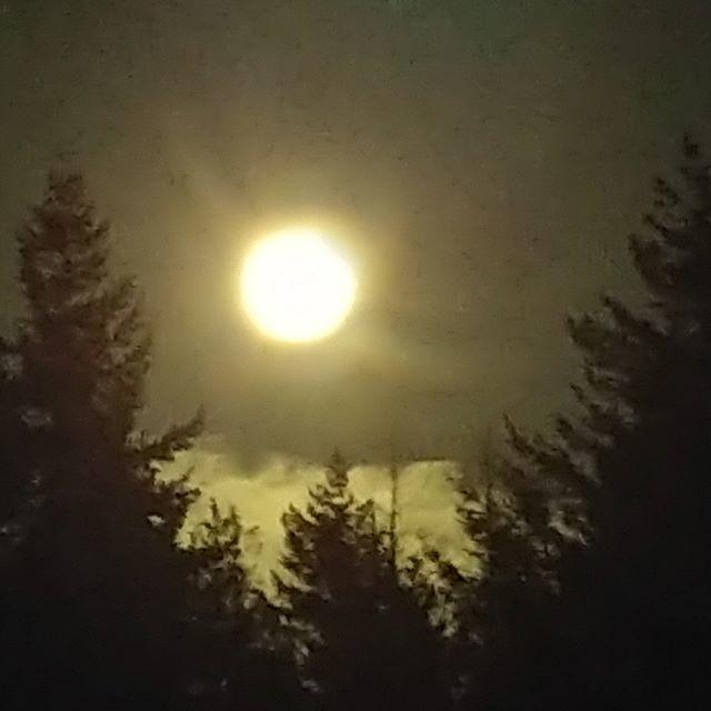 'Tis a full moon tonight.  http://lifesportmedicine.net  #fullmoonritual #fullmoontonight #moonglow #moonlighting #spookynight #livingwellviewpoint #life #sport #medicine #lifestyle #livingwell #wisdom #athlete #tennis #running #soccer #medicaltips #exercis… http://bit.ly/2Ixi4A9