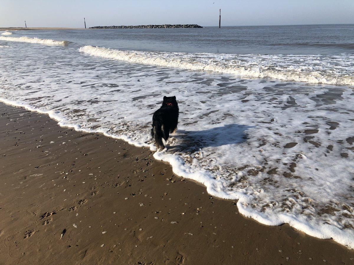 It's our last day.... bye beach... bye waves #HolidayFun #beach #bionics #izzyofinstagram ❤️❤️❤️