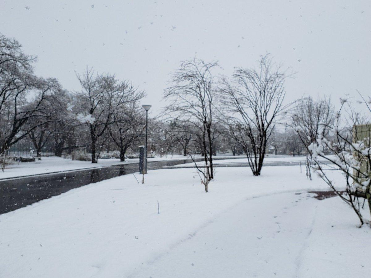 RT @ymori117: たった10日で冬から春になりました。 https://t.co/mosBDD5OTd