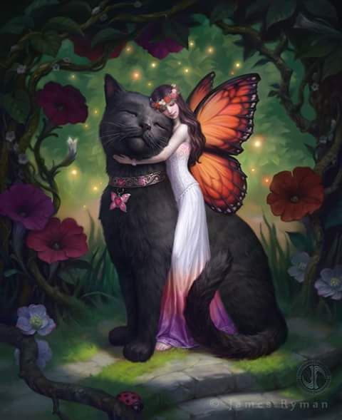 Goodnight and Sweetest of Dreams  #goodnight  #fairy