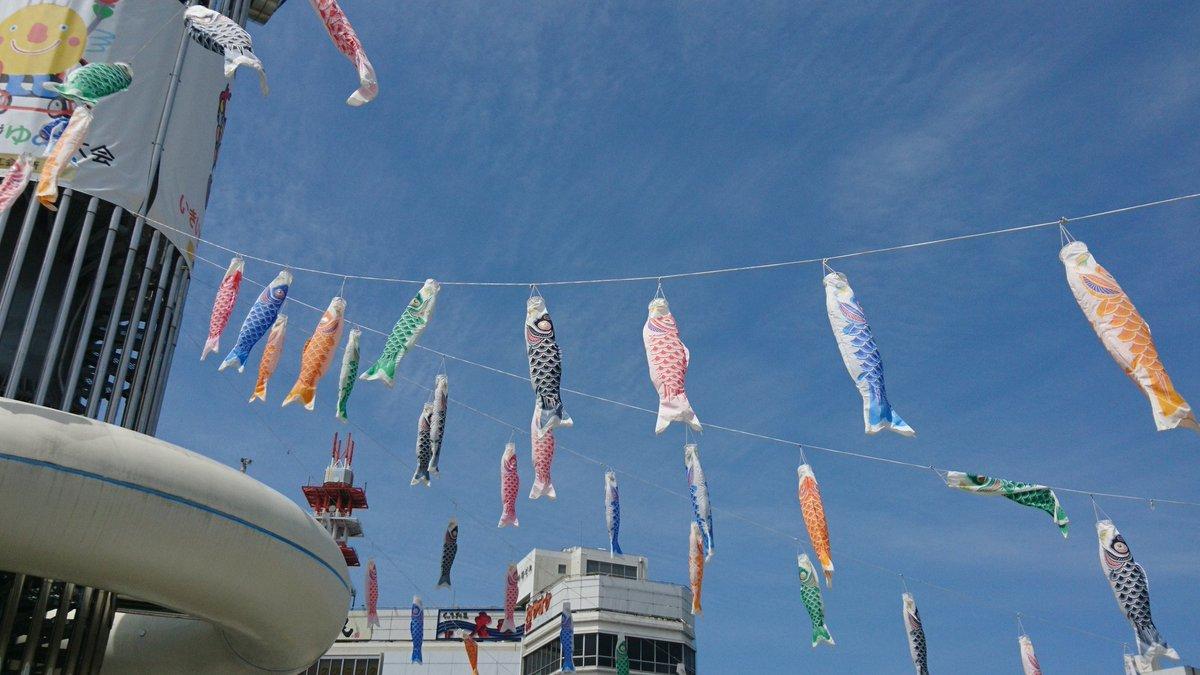 今年も鯉のぼり出てたー! 爽やか青空。