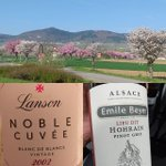 #happyeaster with two nice #cuvee  #champagne #lanson #vintage #blancdeblancs and #pinotgris #premiercru #lieudit #hohrain #emilebeyer #alsace  #sommelierlifestyle #somm #sommlife  #drinkchampagne #drinkalsace  #visitalsace #instawine #winegeek #wineclub… https://t.co/neBfRGxsme