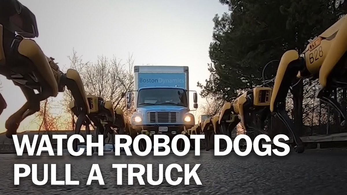 Image for the Tweet beginning: Watch this pack of robot