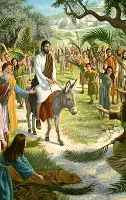 D4lw-sBW0AAZWRu - New Christmas Tradition - Bible Study