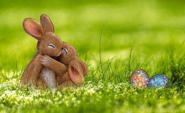 RT @kamiumach: 【教会豆知識】  イースターと言えばウサギがシンボルだが、うさぎは聖書には2回しか出てこない。それも律法において「食べてはいけない」と規定されているだけであって、イエスの復活には全く関係ないんです https://t.co/VudYv1bhq7