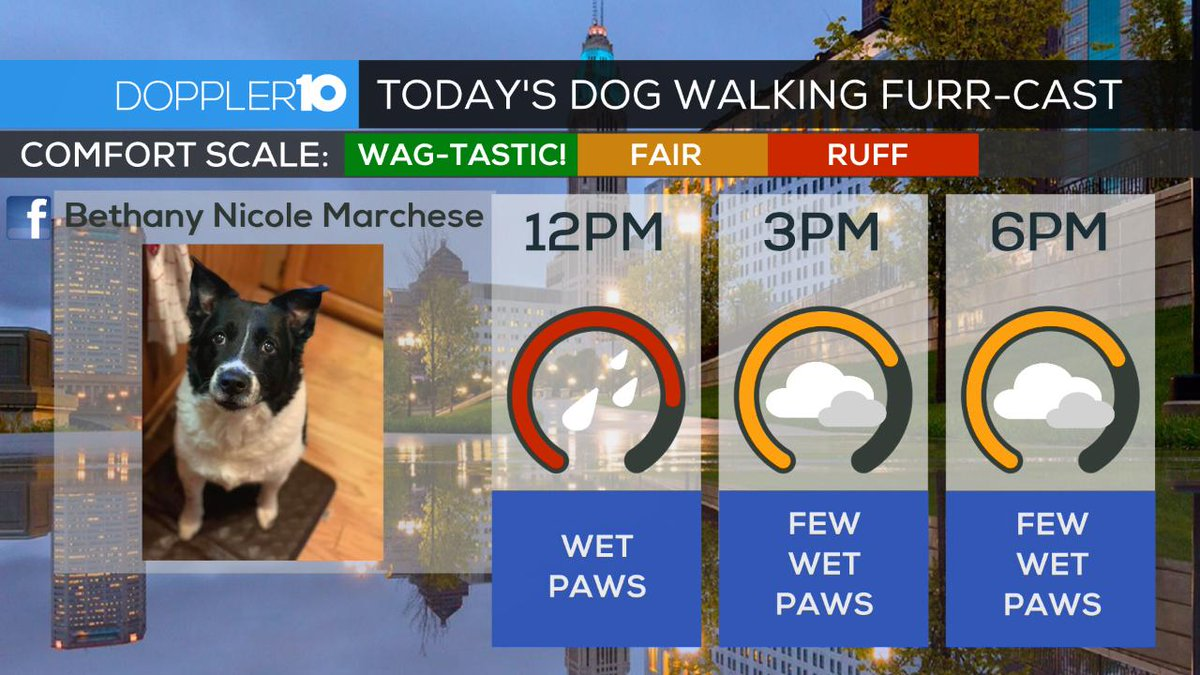 "Dog Walkers Weekly ""Furr-cast"" 