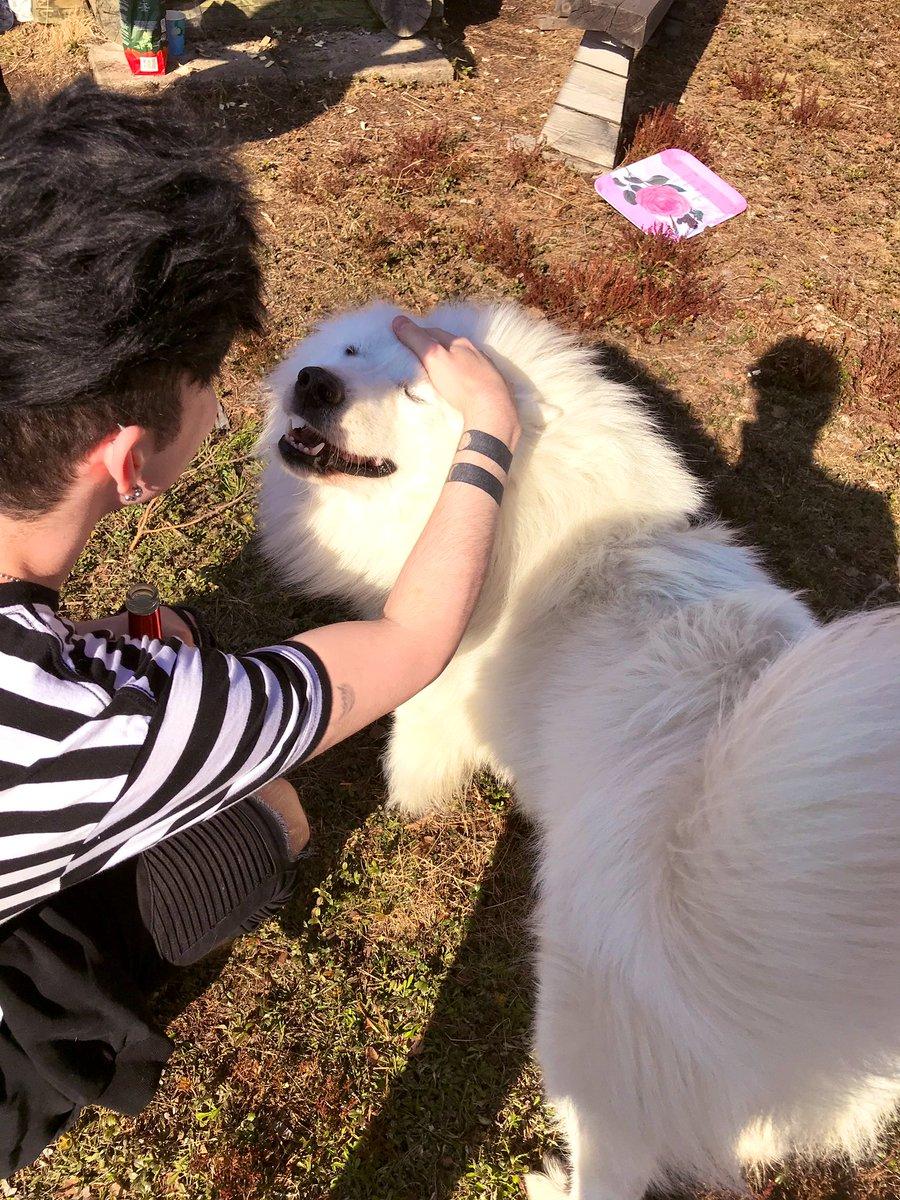 David got many kisses from Lukas the Samoyed <br>http://pic.twitter.com/VXFibM7KsI
