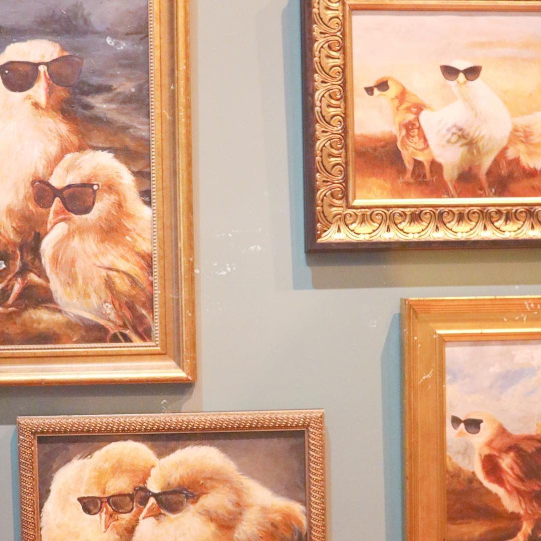 Taylor Swift Posted a Photo of Chickens Wearing Sunglasses and Fans Are Losing It