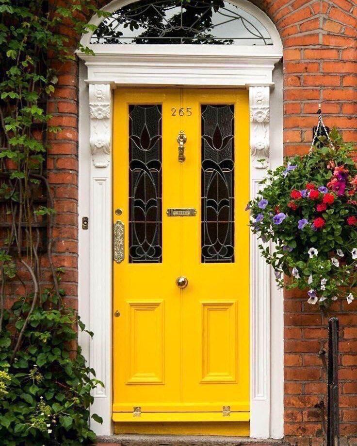 اللون الأصفر يزيد من جمال الحياة 💛.