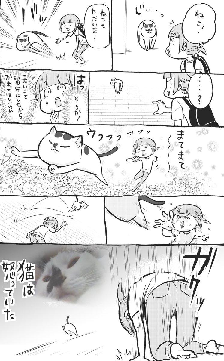 RT @hidekiccan: 犬と猫どっちも飼ってると、長旅の帰りもうんとも楽しい https://t.co/hSqOE2AMtb