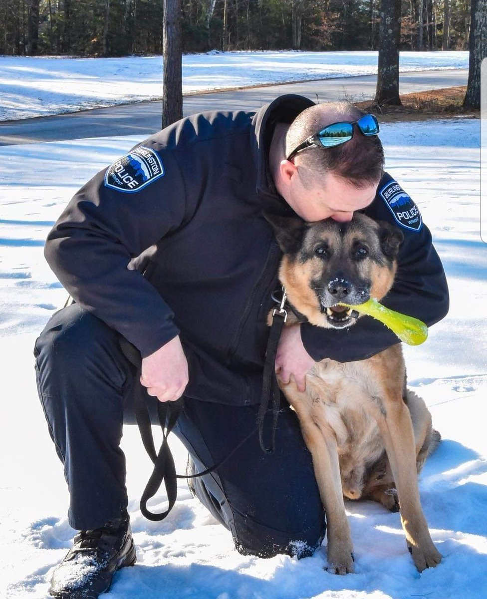 It is with great sadness that we announce the passing of K9 Capone, who died today. Born in 2006, he retired earlier this year after faithfully serving the city of Burlington for 11 years with his partner Corporal Trent Martin. The BPD will miss him. Rest in peace. <br>http://pic.twitter.com/TIhkId4Eeg