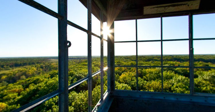 Hike to 100-foot tall fire tower at St. Croix State Park  #Minnesota #Northwoods #hikingdays http://hikeswithtykes.blogspot.com/2013/09/day-hike-to-100-foot-tall-fire-tower-at.html …