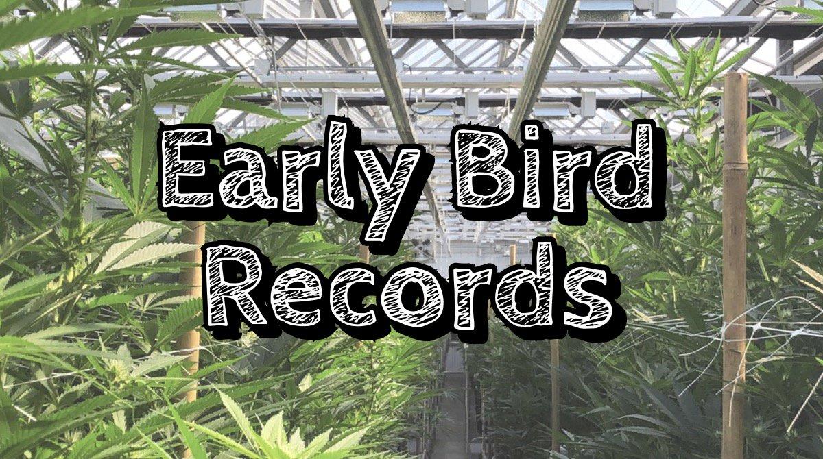 Early Bird Episode 3