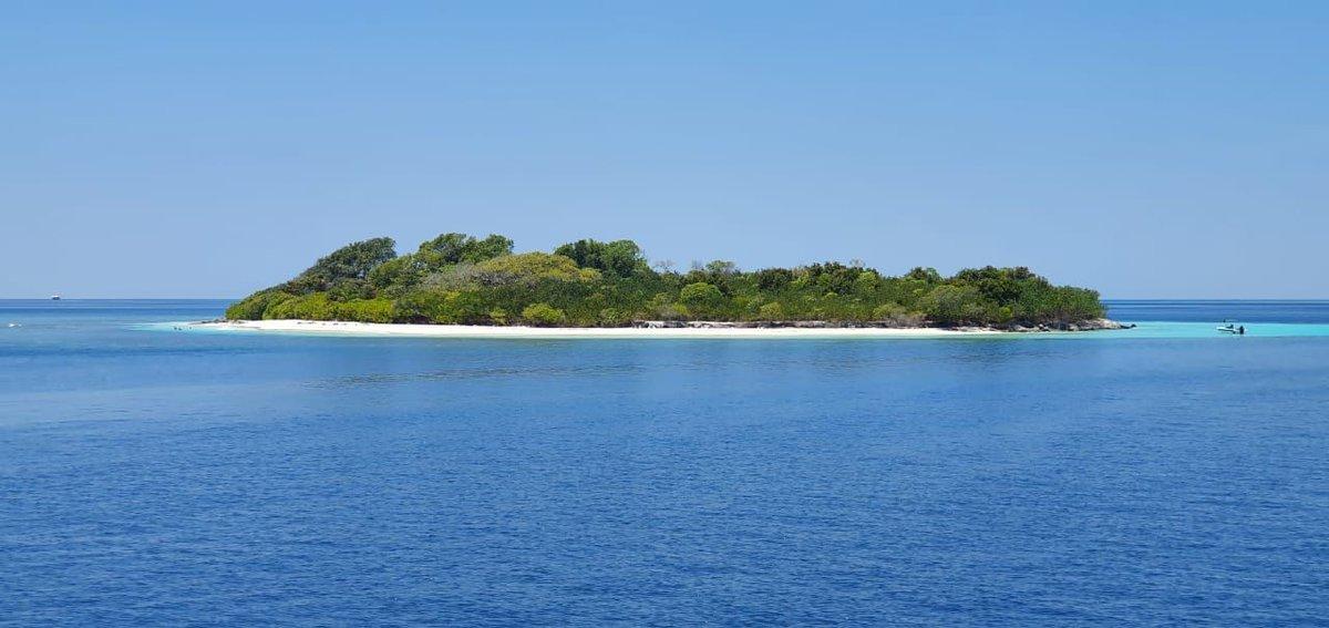 Island from Maldives ⠀ #Yasawaprincess #Yasawa #YP #Maldives #cruise #cruising #relaxing #beach #snorkeling #scuba #diving #cruiselife #beach #visitmaldives #sharks #cruisetravel #cruises #cruiseaddict #cruiselifecc
