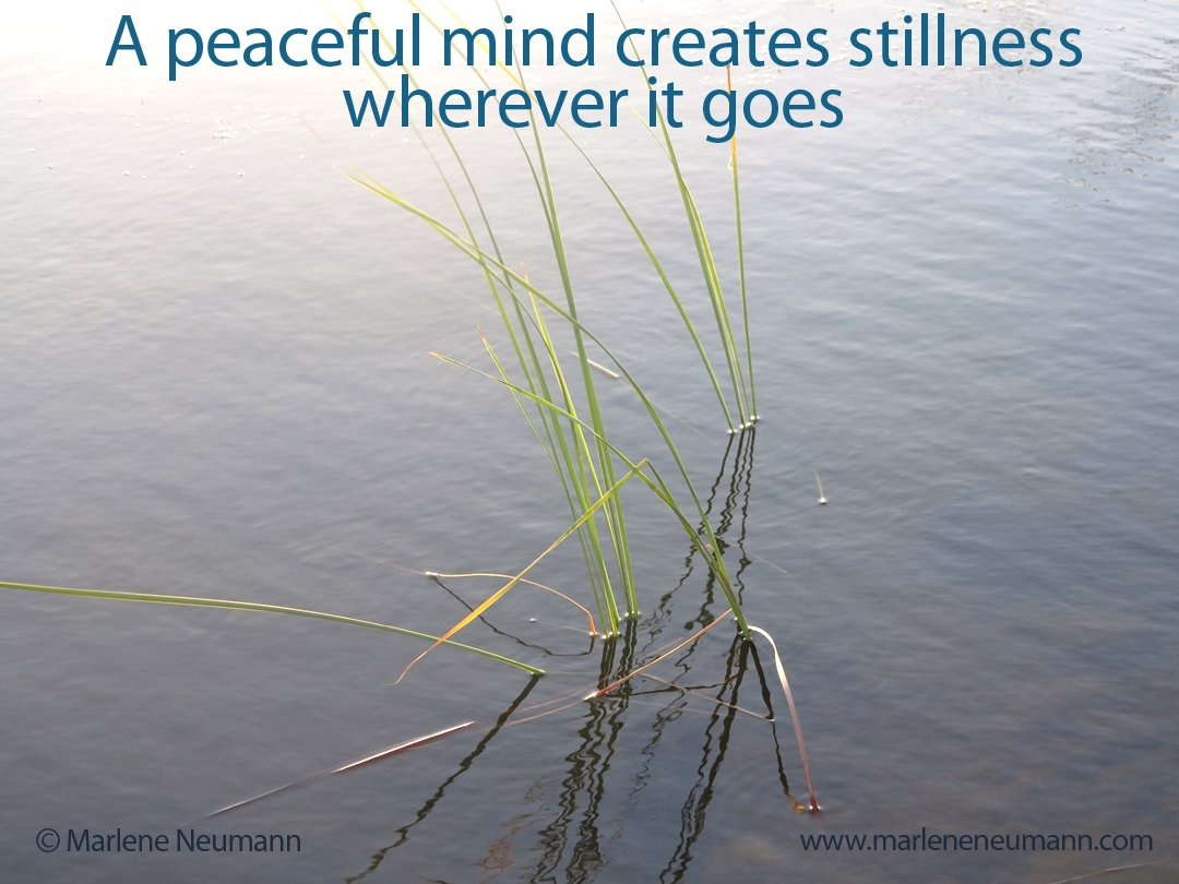 A peaceful mind creates stillness wherever it goes... http://bit.ly/2Gr8cok #Peace #LifeLessons #MIND #quoteoftheday