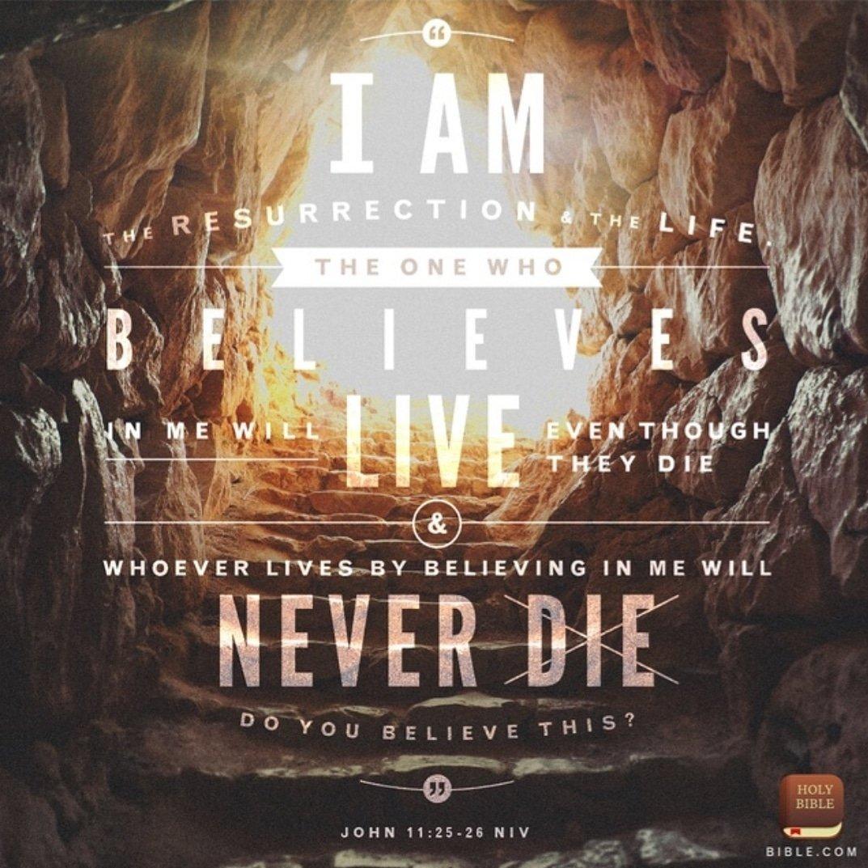 John 11:25-26 #verseoftheday #votd #bible #bibleverse #scripture #truth #lifelessons #scriptureoftheday #godsword #seekgod