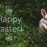 Image for the Tweet beginning: Happy #Easter!