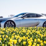 The #Tulips are in full bloom. #LexusLC