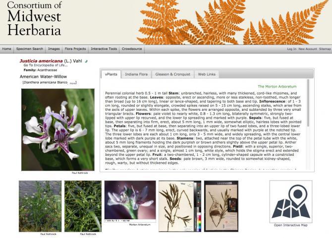 Découvrez le monde fascinant de la flore grâce à cet herbier numérique https://www.actualitte.com/t/QxNfivBv #herbier #numérique #flore #nature #internet #numérisation #plantes 🌿🍁🍃🍂🌺