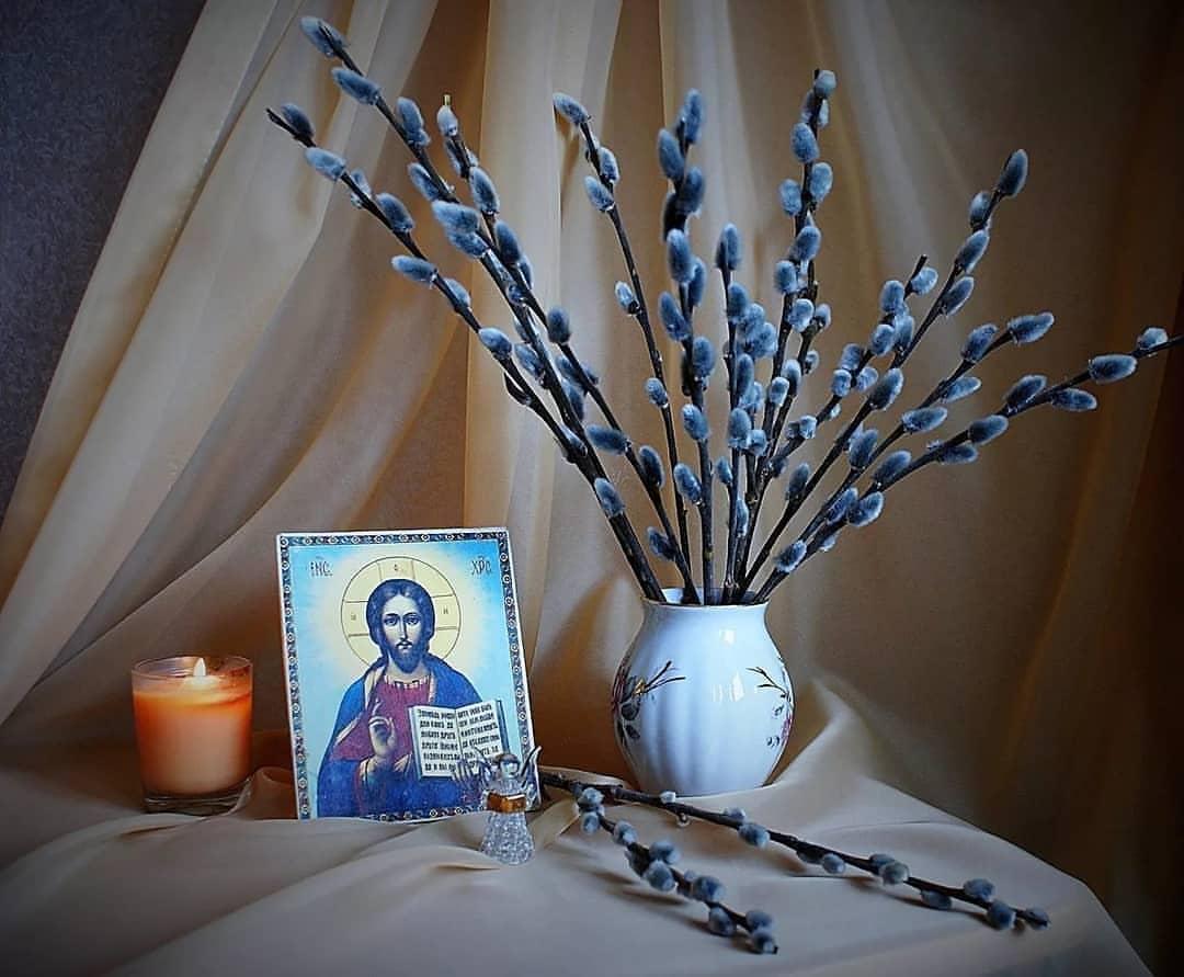 Картинка с вербным воскресеньем католическая, открыток