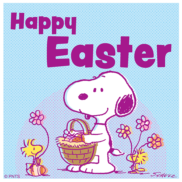 Happy Easter! 🐰