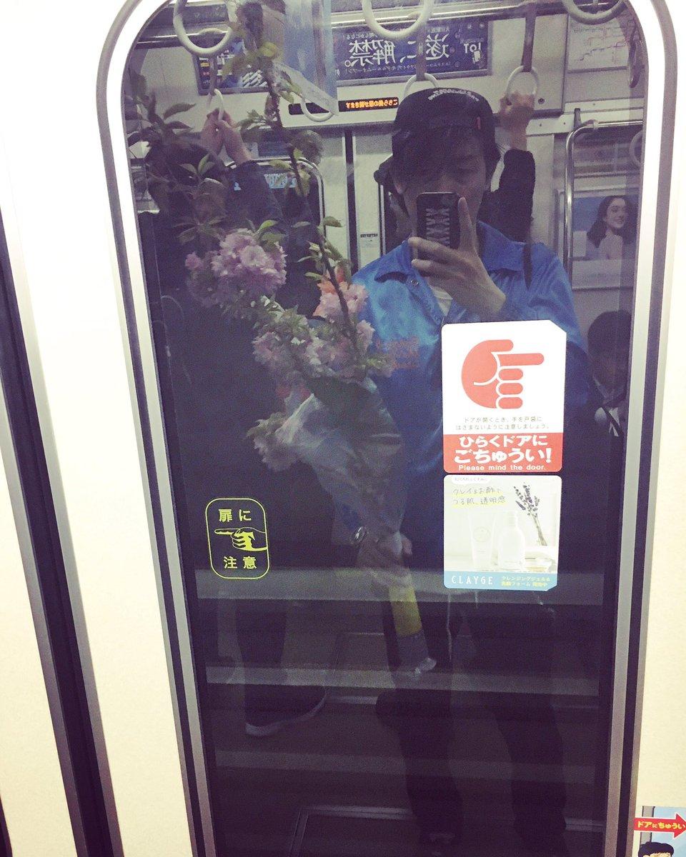長さ1m50cm程の桜の枝を貰った。 電車で持って帰るものじゃない。 乗客が盗っ人を見る目だ。   ※今日から阿倍野「CAFE&BAR 色s」で花見できるよ。ビバ10周年。  #色s #shocks #bar #cafe #ビール #カクテル #珈琲 #ジュース #カレー #柿ピー #オール500円 #10周年 #sex #drink #ROCKnROLL #桜 #花見
