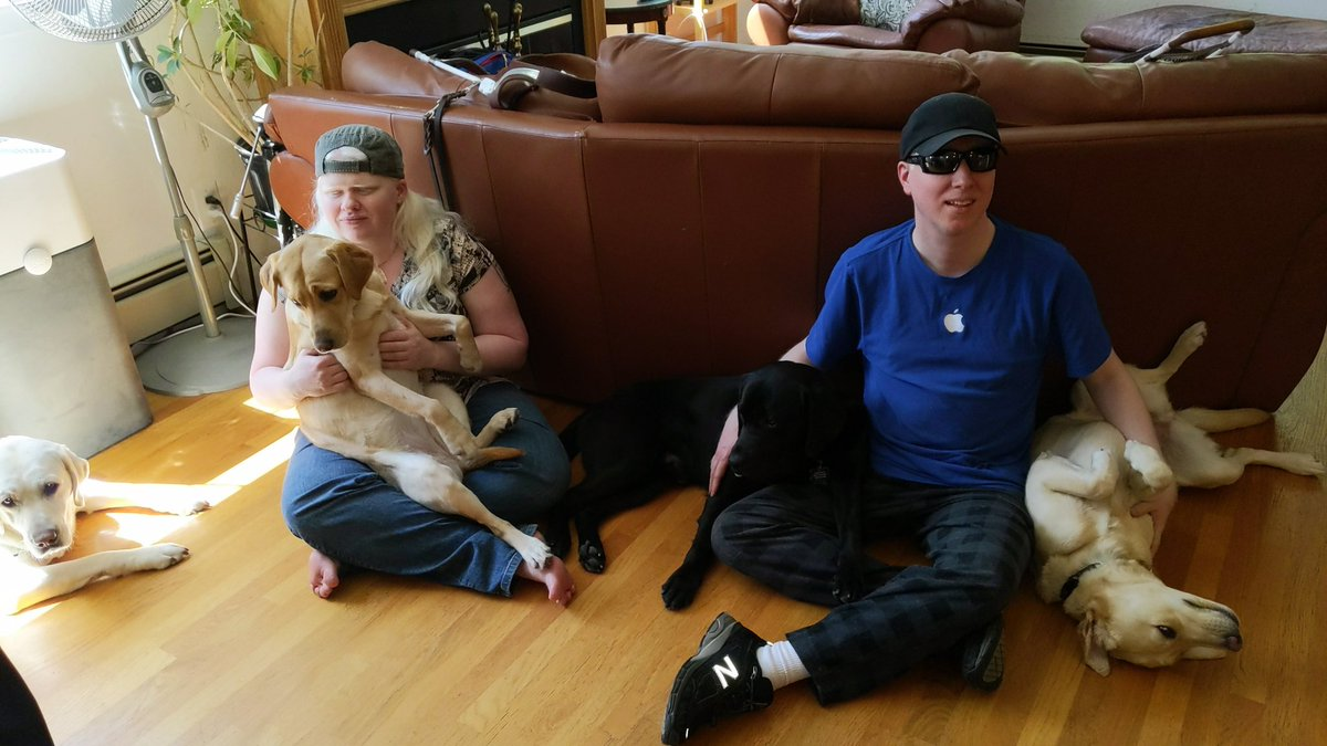 Two people with four dogs sitting in their laps leaning against the sofa