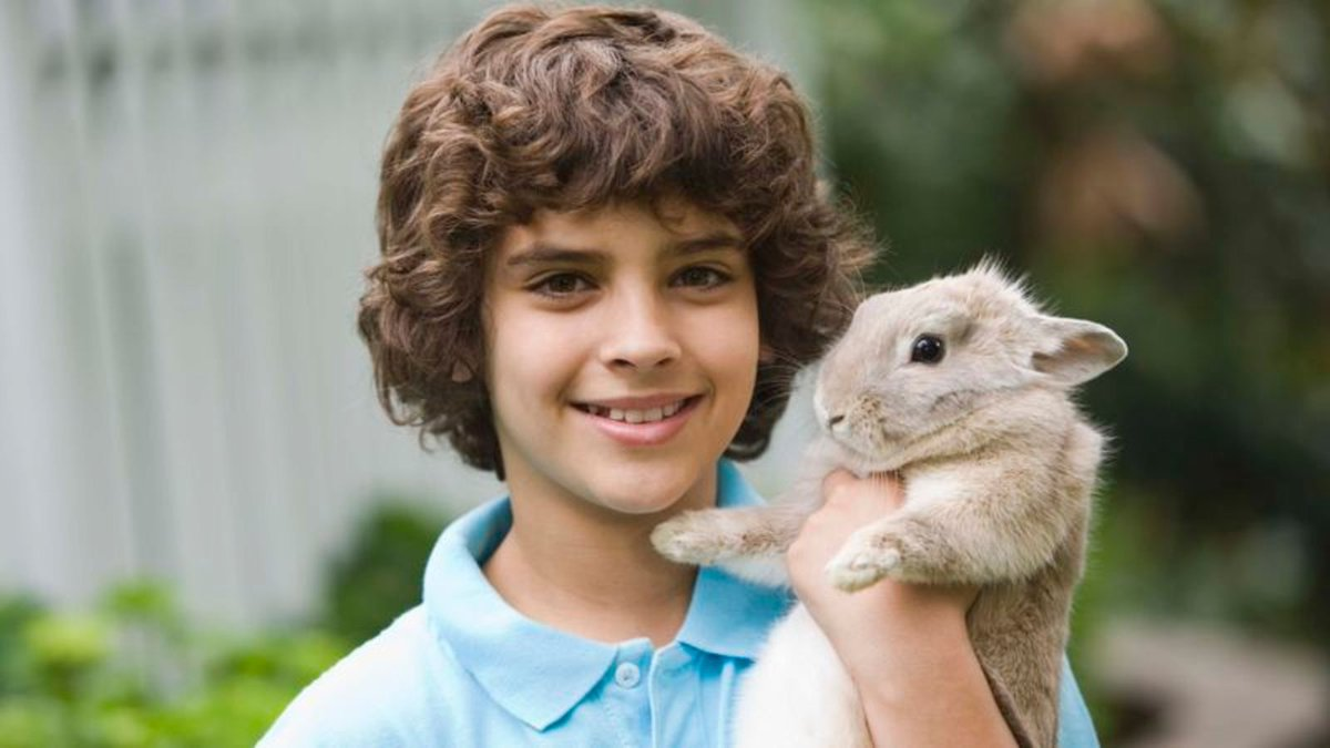 Doomed Rabbit To Teach 8-Year-Old About Responsibility trib.al/qfaCOes