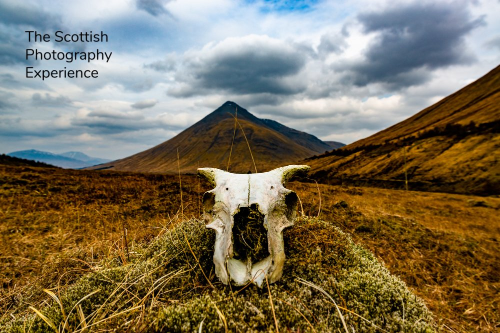 #outlander BREAKING NEWS: Edinburgh Photography Tours offer Outlander Photography Tours. Single day tours now available! Select the sites you want to visit. For further details please click here: https://www.jameschristiephotography.com   @Writer_DG Inspired by Diana Gabaldon