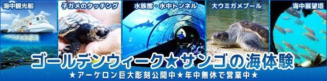 KushimotoMP photo