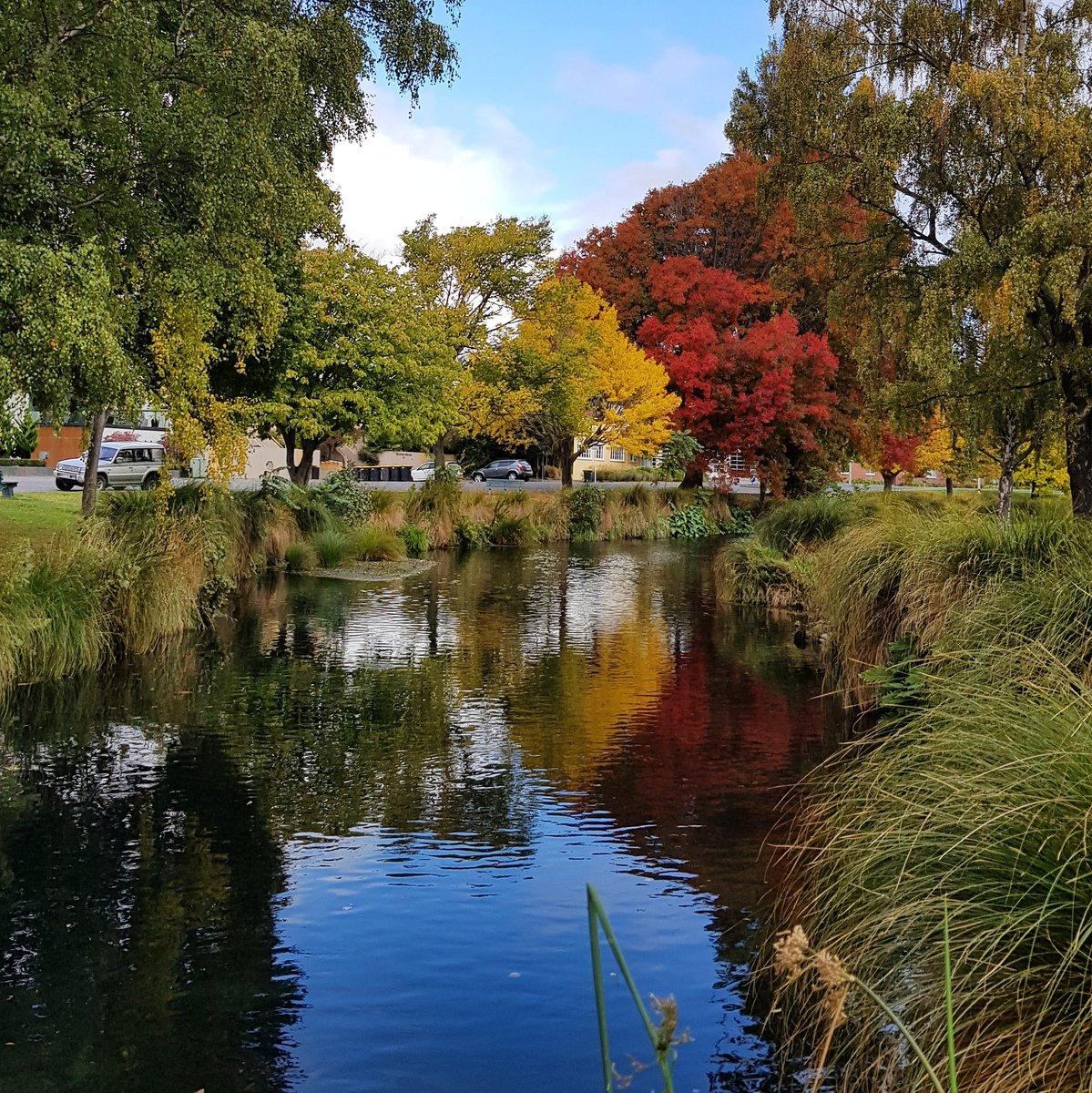 Colours in Christchurch #christchurch  #NewZealand<br>http://pic.twitter.com/7gUVIoqHXL