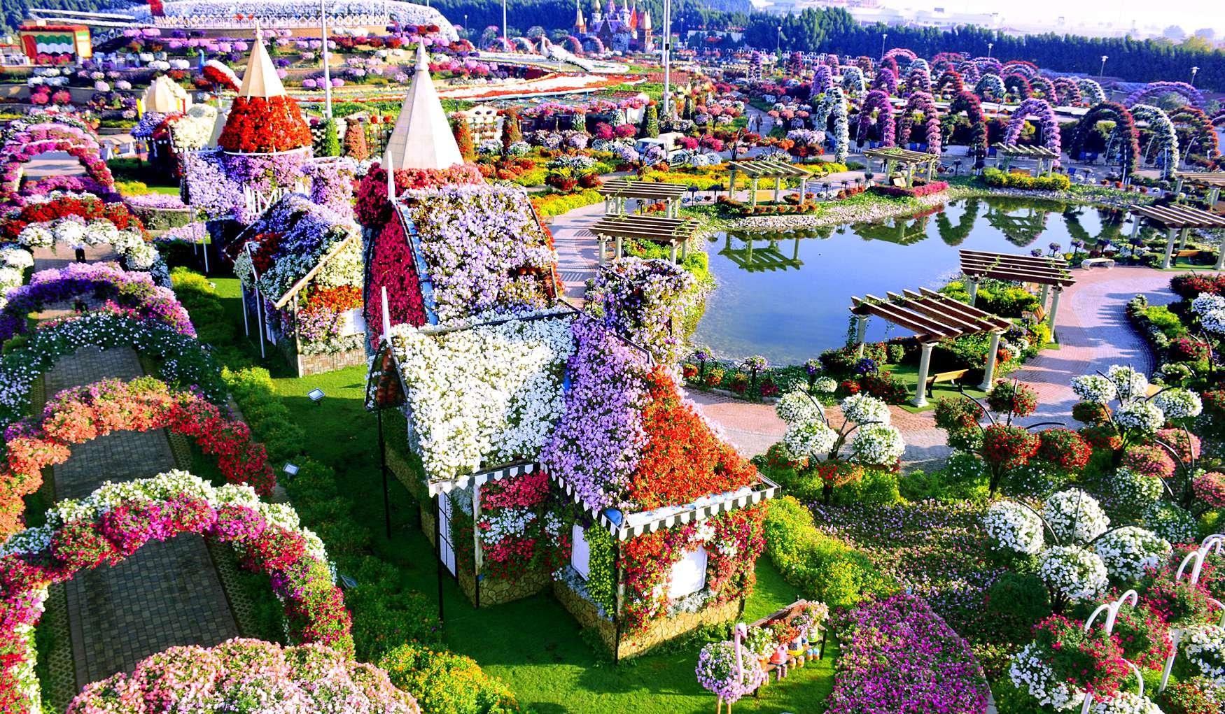 Цветы мира официальный сайт