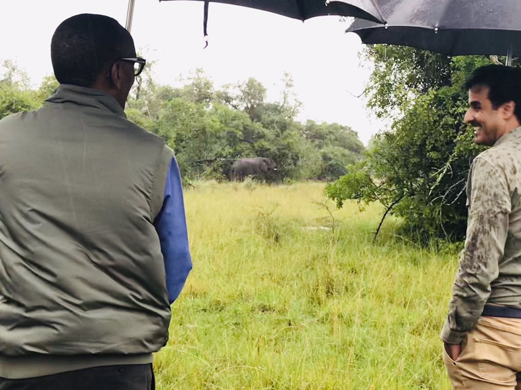 President Kagame and H.H Sheikh Tamim bin Hamad Al Thani  are now visiting Akagera Park, home to the Big Five animals