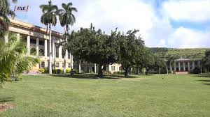 University of Hawaii at Manoa public safety detain suspect in sexual assault