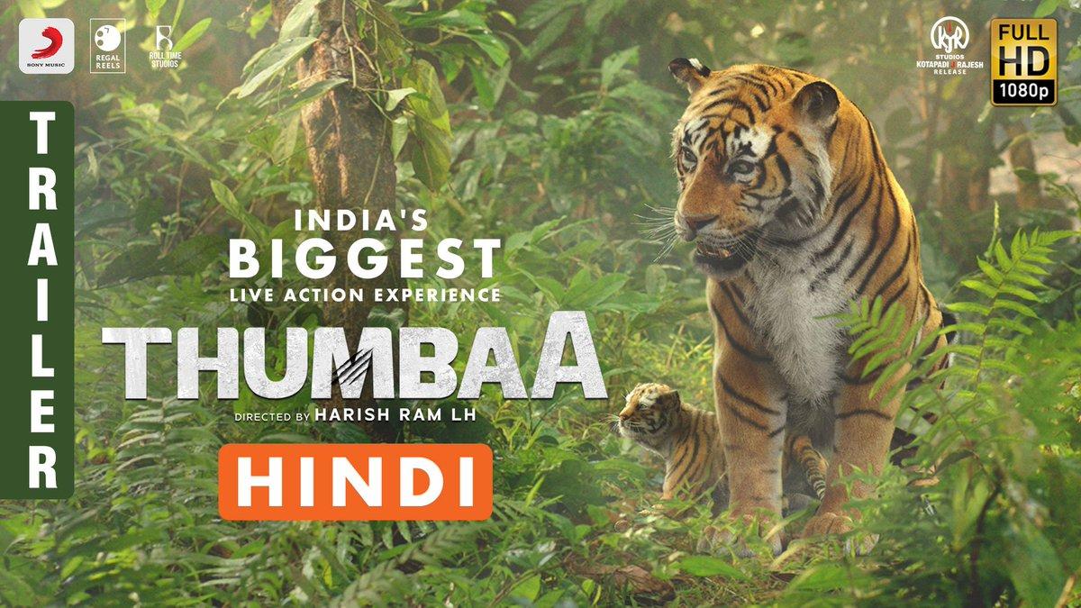 Presenting the trailer of India's Biggest Live Action Adventure film - #Thumbaa 🐅#ThumbaaTrailer : http://bit.ly/ThumbaaHindiTrailer…  @harishramlh @Darshan_Offl @ActDheena @ikeerthipandian @SonyMusicSouth @kjr_studios