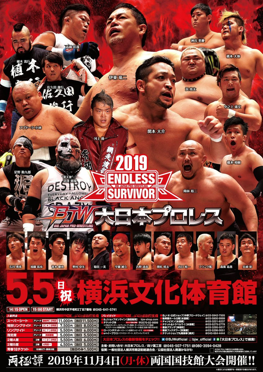 Image result for bjw endless survivor