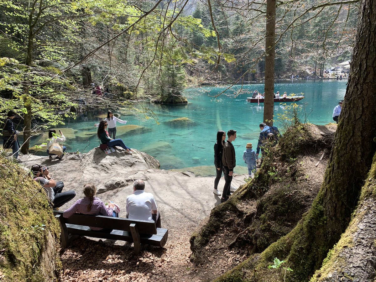What nature can offer in #Blausee in Canton #Bern #Switzerland, #SaveThePlanet https://t.co/DOwt4rZkzS